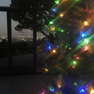 puc_holidaytree